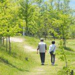 吟行のやり方と3つのコツ。植物に名札が付いている公園に行くとネタ選びがしやすい。