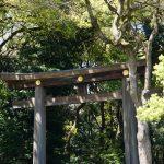 吟行俳句会を開催します!5月31日金曜日。東京の明治神宮